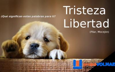 Tristeza. Libertad.