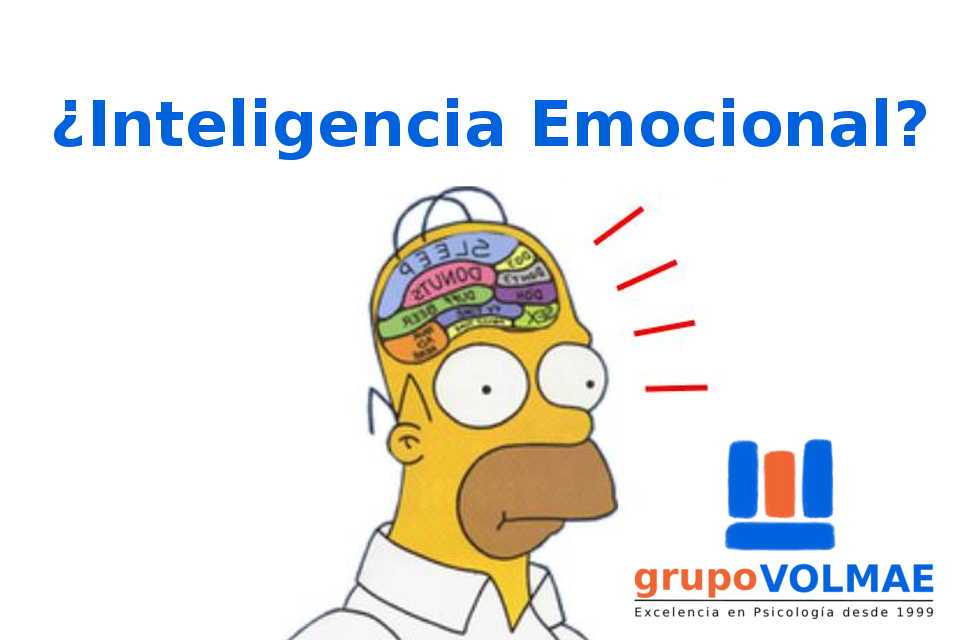 inteligencia emocional. grupoVOLMAE